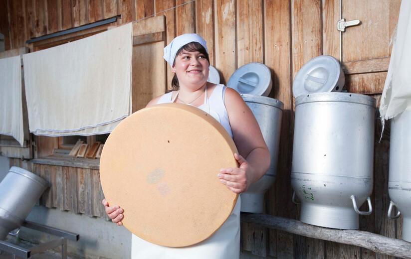 Urgut zu wissen: Wie wird die Milch zum Heumilchkäse?