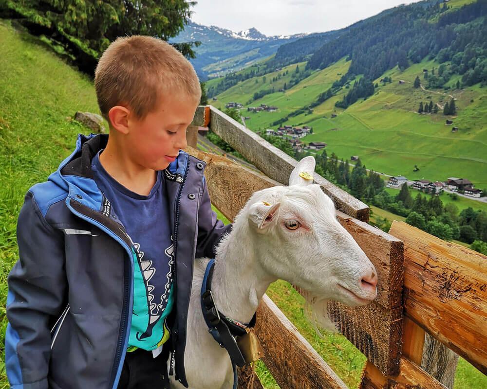 Kinder_am_Heumilchbauernhof