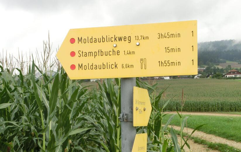 Wanderung_Richtung_Moldaublick