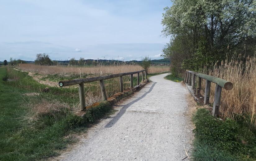Heumilch-Wanderung #1: Mit der Familie unterwegs im Allgäu