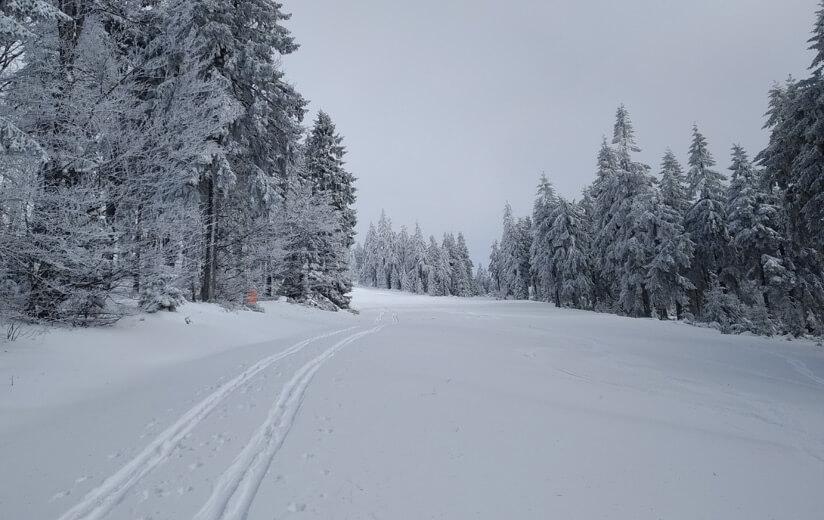 Heumilch_Region_OÖ_Winter