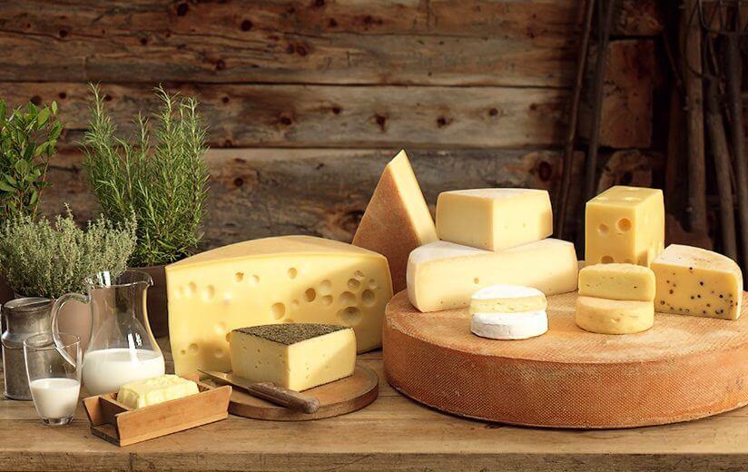 """Gleich drei Heumilch-Käse sind """"Kaiser"""""""