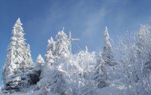 Winter_OÖ_Totwald