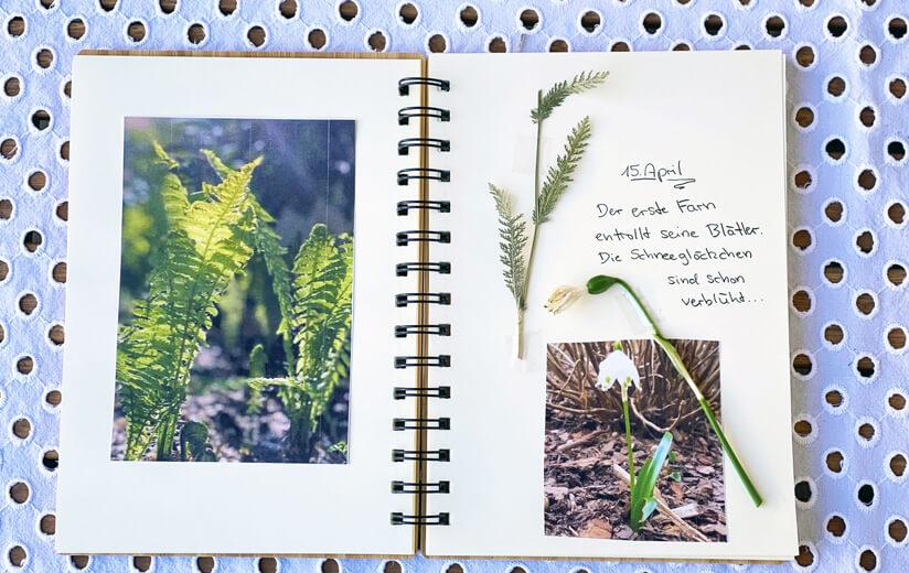 Im Einklang mit den Jahreszeiten: Gestalte jetzt dein Gartentagebuch!