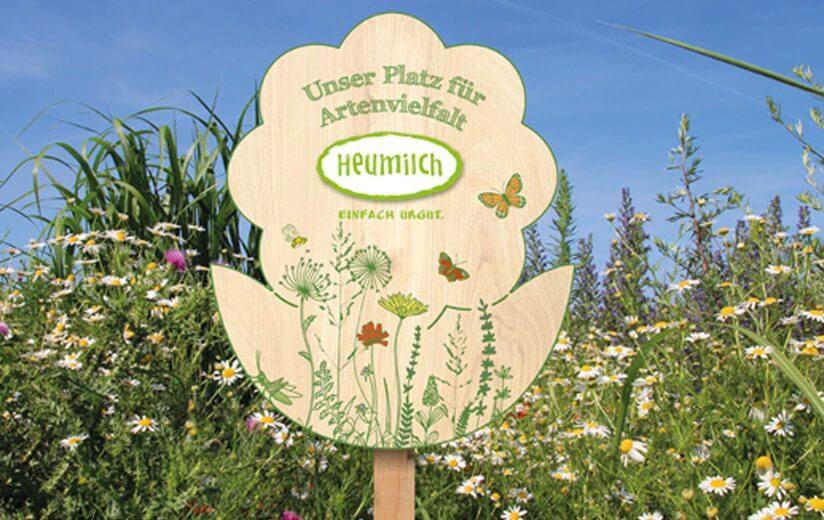Mehr Platz für Artenvielfalt: Was hinter den Heumilch-Blumenholztafeln steckt