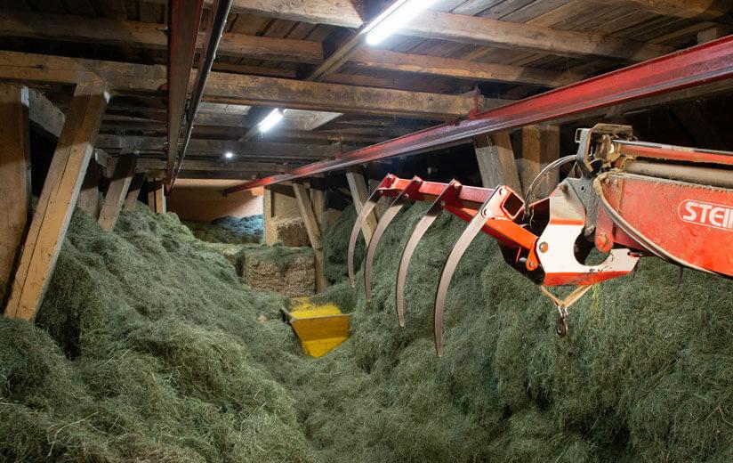 Für Heumilchbauern